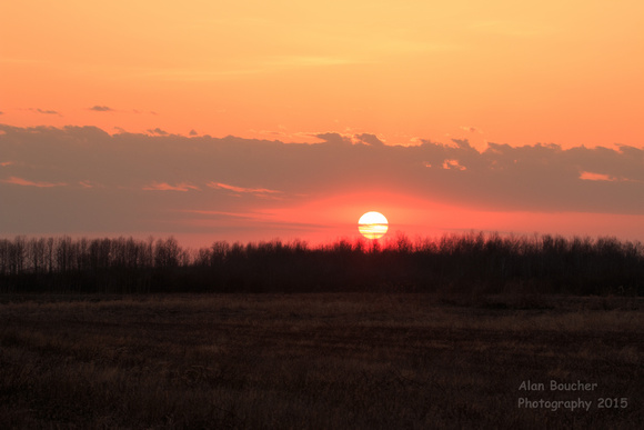 Sunset from the Lek